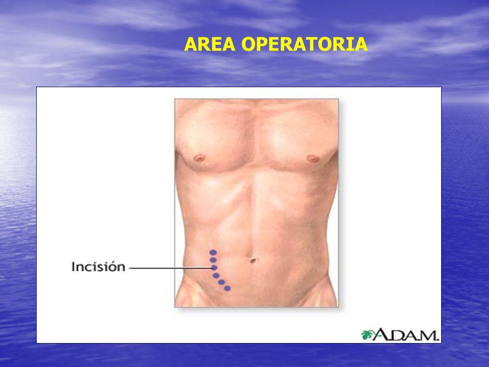 AREA OPERATORIA