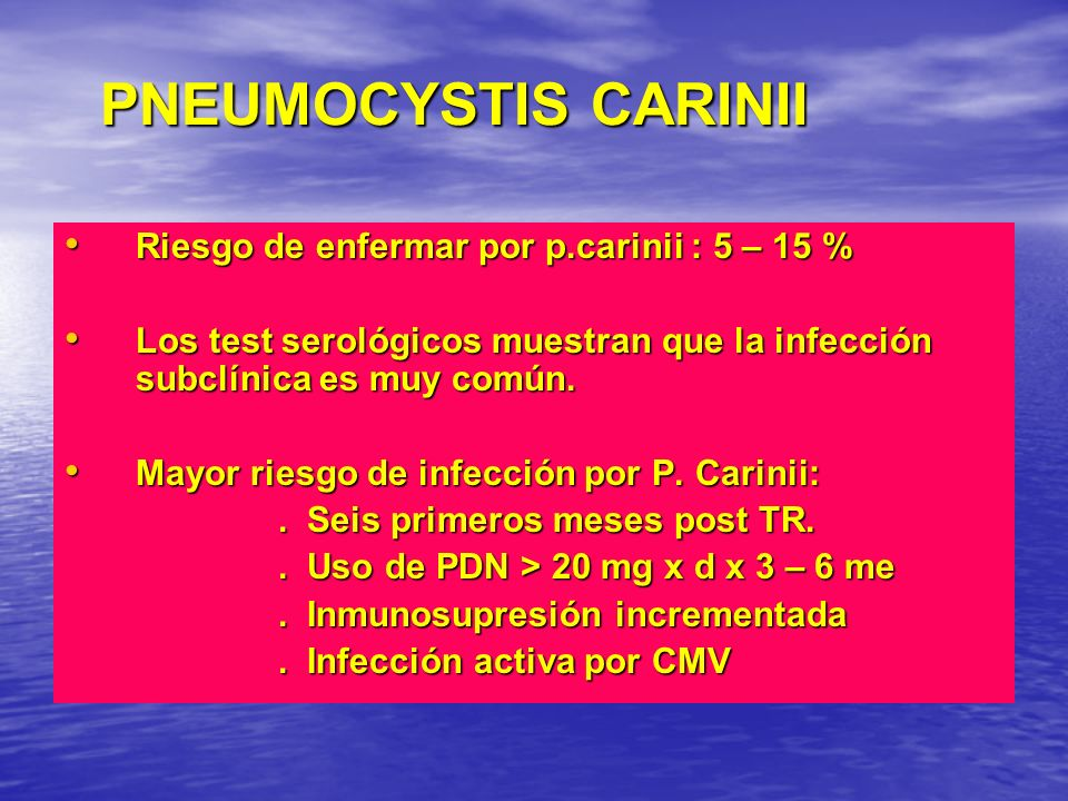 PNEUMOCYSTIS CARINII Riesgo de enfermar por p.carinii : 5 – 15 %
