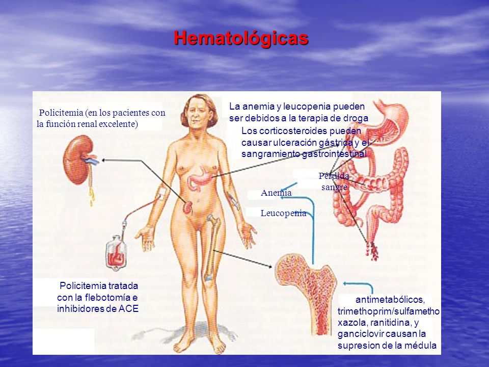 HematológicasLa anemia y leucopenia pueden ser debidos a la terapia de droga. Policitemia (en los pacientes con la función renal excelente)
