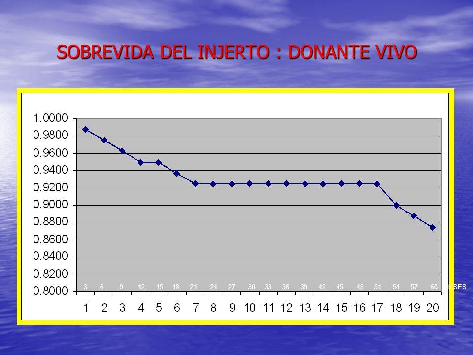 SOBREVIDA DEL INJERTO : DONANTE VIVO
