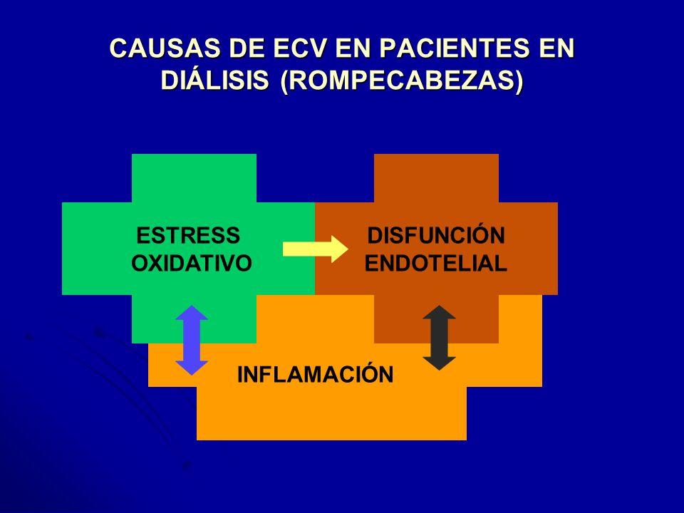 CAUSAS DE ECV EN PACIENTES EN DIÁLISIS (ROMPECABEZAS)