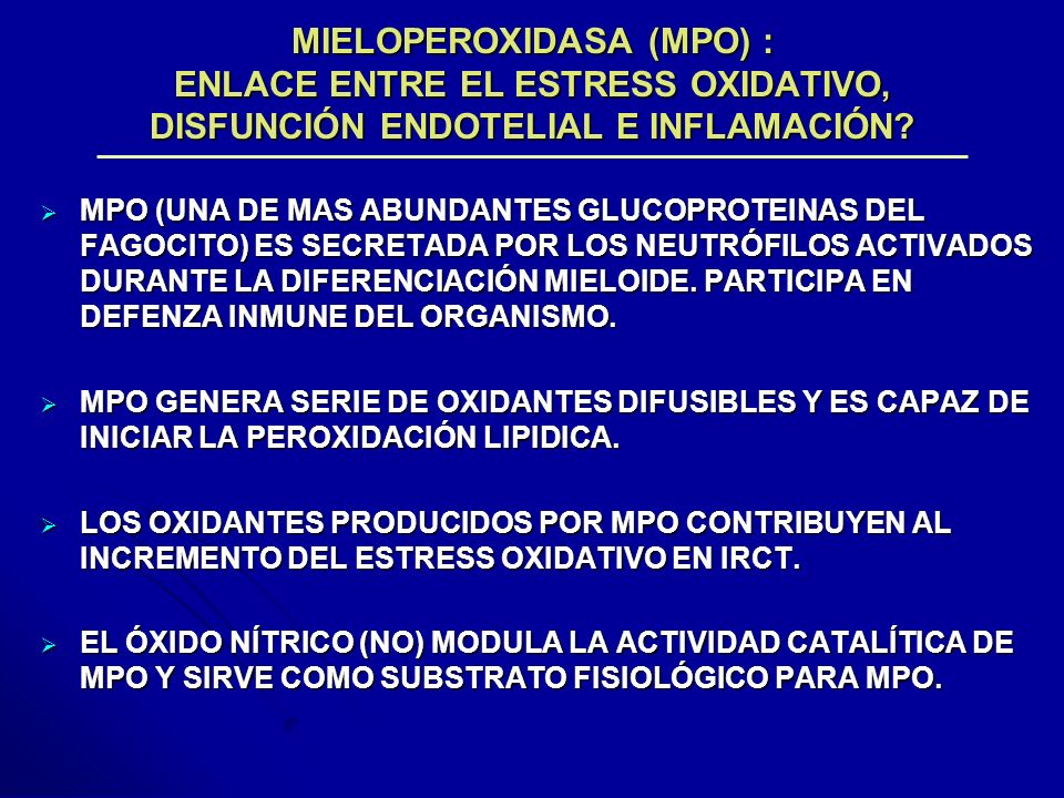 MIELOPEROXIDASA (MPO) : ENLACE ENTRE EL ESTRESS OXIDATIVO, DISFUNCIÓN ENDOTELIAL E INFLAMACIÓN