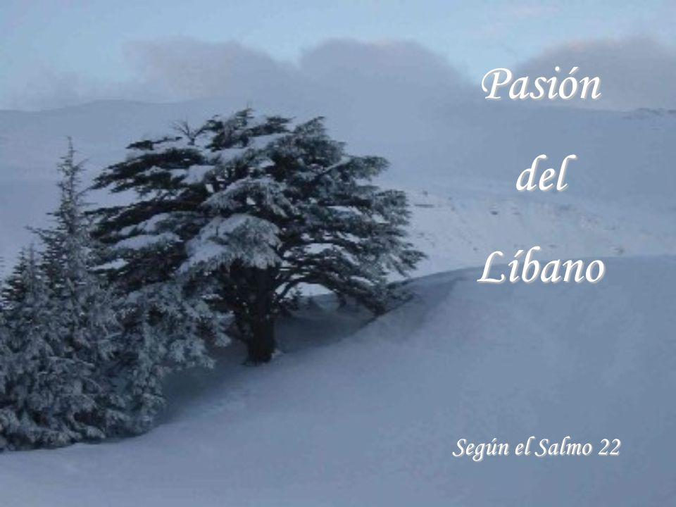 Pasión del Líbano Según el Salmo 22