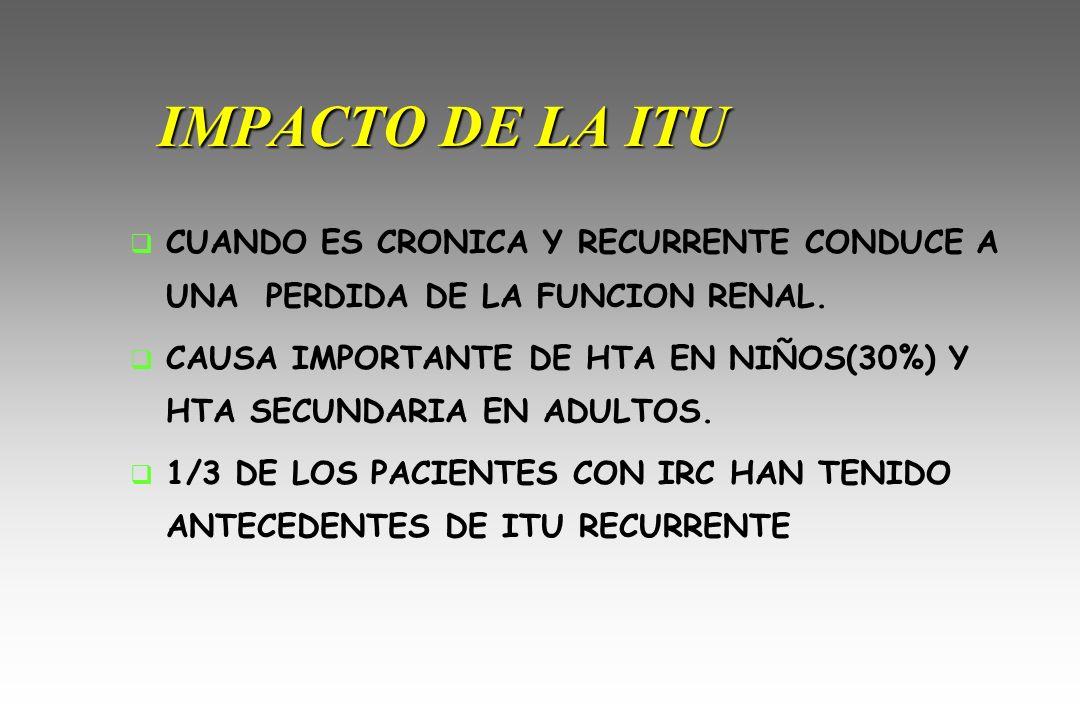 IMPACTO DE LA ITU CUANDO ES CRONICA Y RECURRENTE CONDUCE A UNA PERDIDA DE LA FUNCION RENAL.
