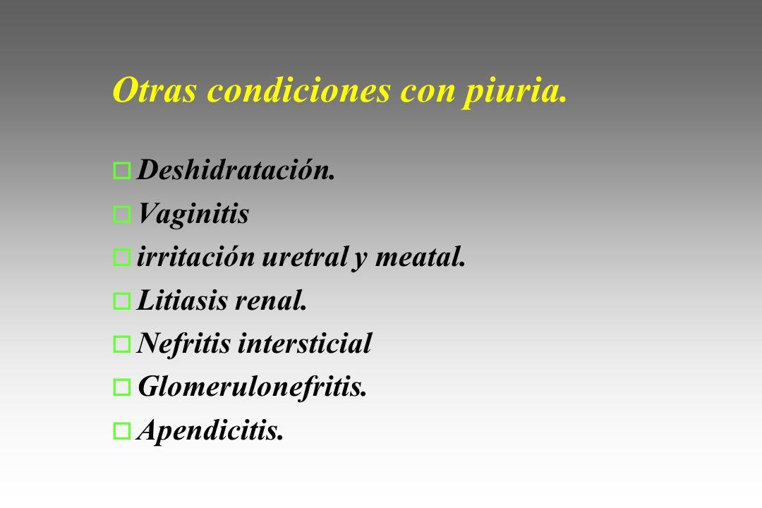 Otras condiciones con piuria.