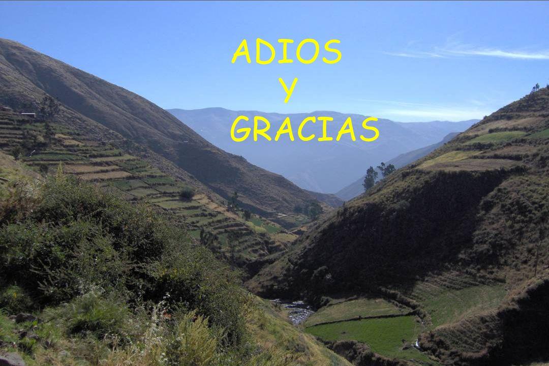 ADIOS Y GRACIAS
