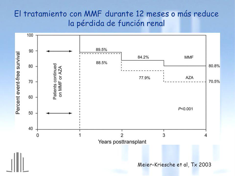 El tratamiento con MMF durante 12 meses o más reduce la pérdida de función renal