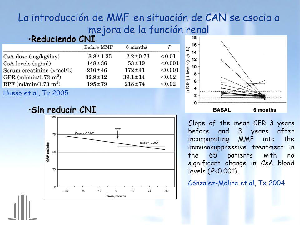 La introducción de MMF en situación de CAN se asocia a mejora de la función renal