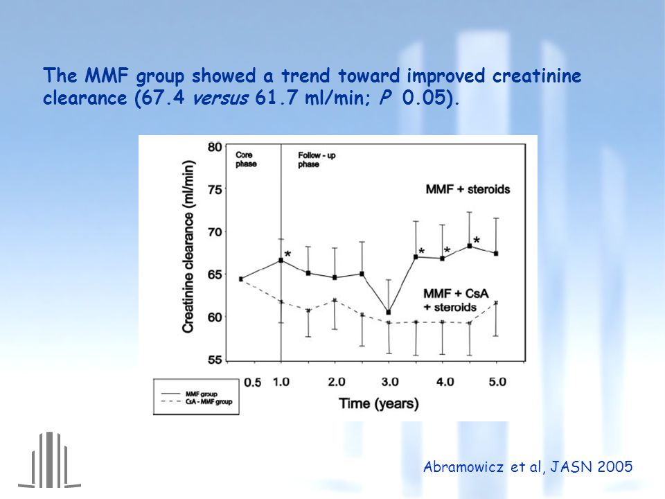 The MMF group showed a trend toward improved creatinine clearance (67