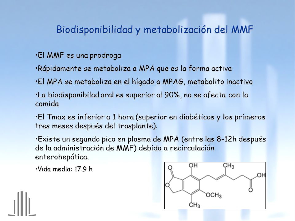 Biodisponibilidad y metabolización del MMF