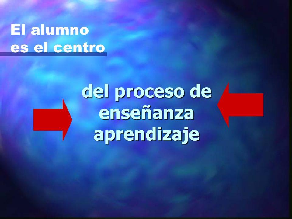 del proceso de enseñanza aprendizaje