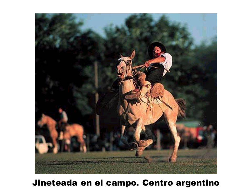 Jineteada en el campo. Centro argentino