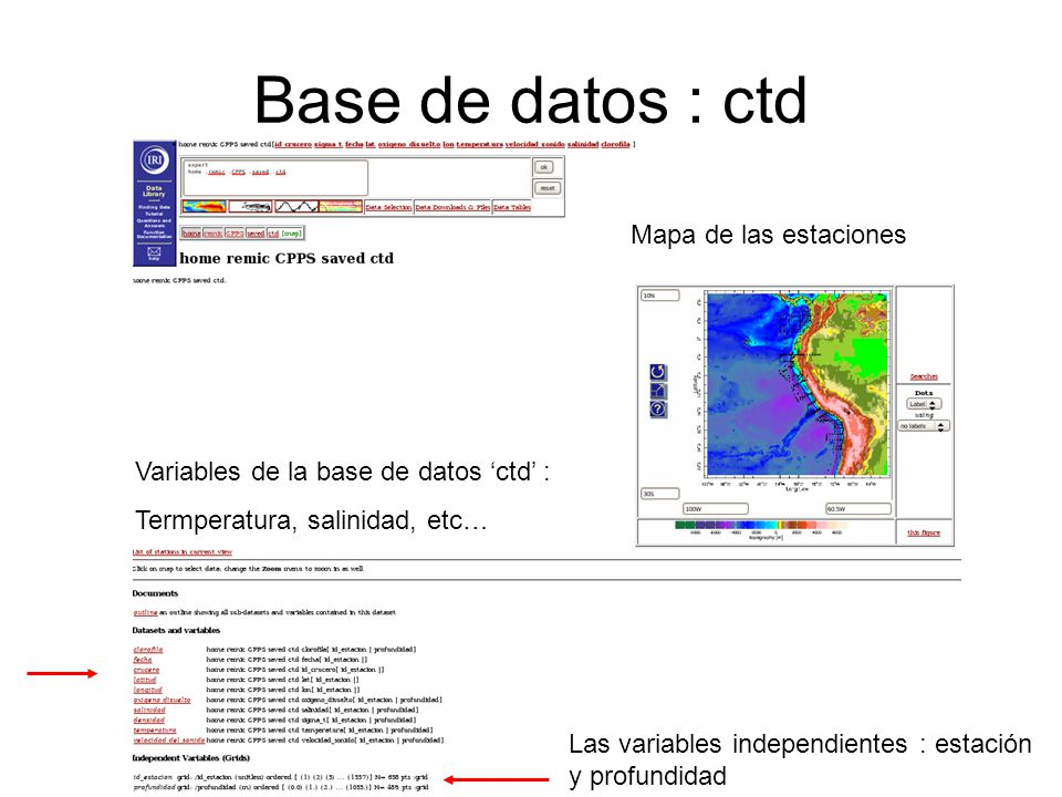 Base de datos : ctd Mapa de las estaciones