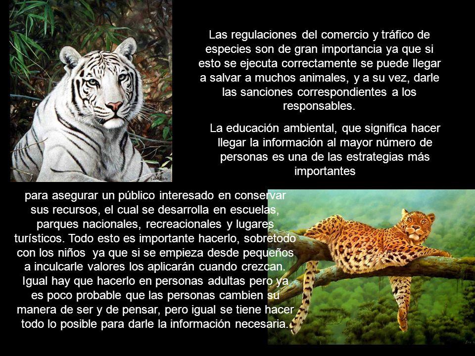 Las regulaciones del comercio y tráfico de especies son de gran importancia ya que si esto se ejecuta correctamente se puede llegar a salvar a muchos animales, y a su vez, darle las sanciones correspondientes a los responsables.