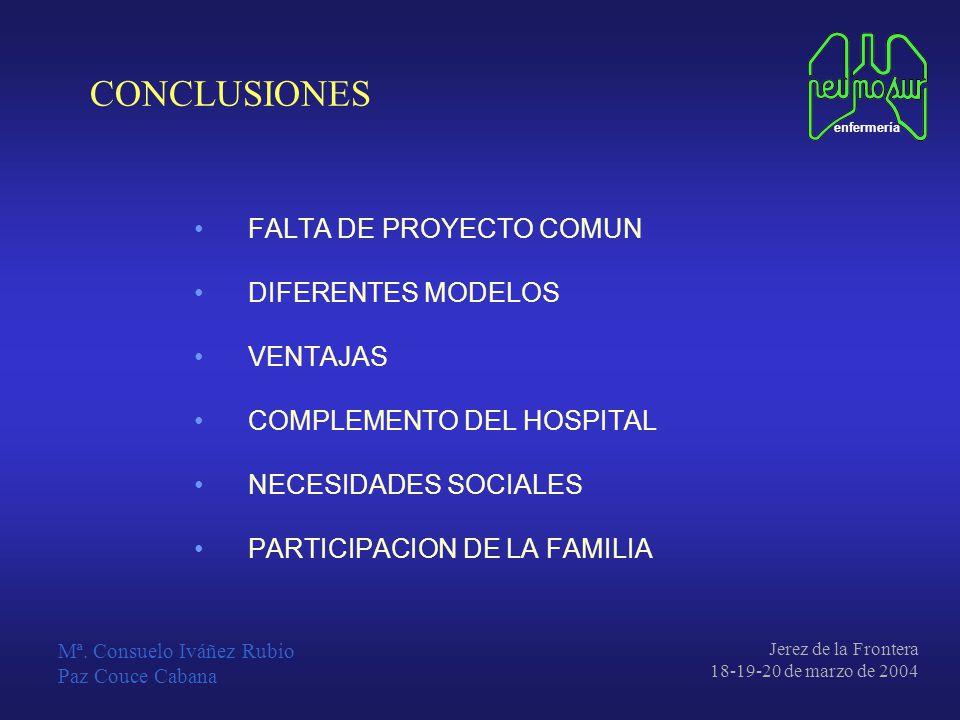 CONCLUSIONES FALTA DE PROYECTO COMUN DIFERENTES MODELOS VENTAJAS