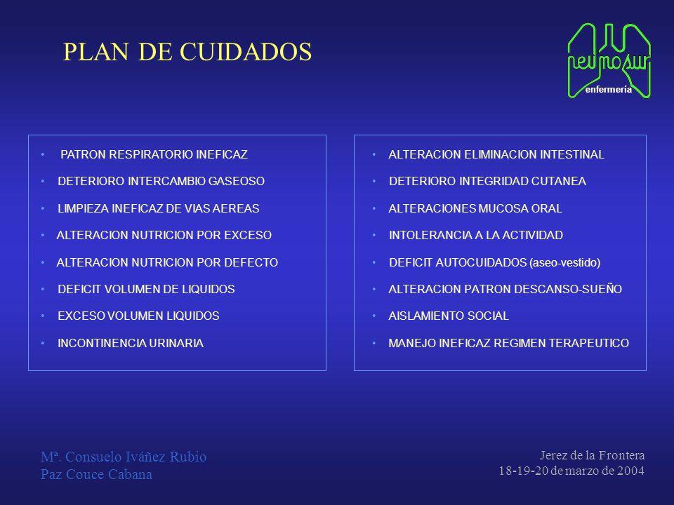 PLAN DE CUIDADOS Mª. Consuelo Iváñez Rubio Paz Couce Cabana