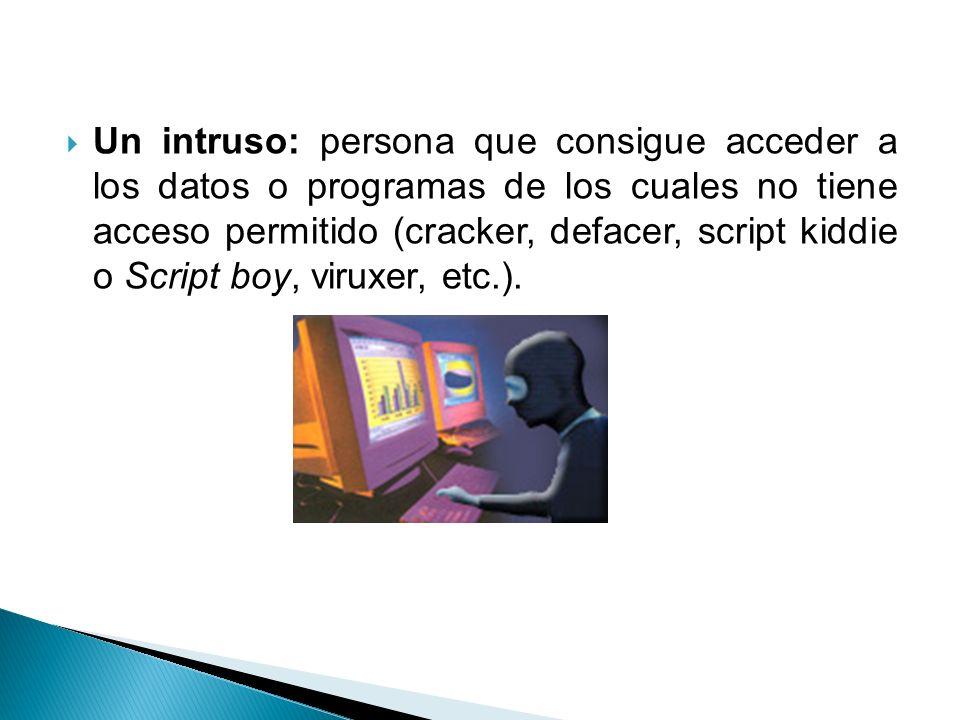 Un intruso: persona que consigue acceder a los datos o programas de los cuales no tiene acceso permitido (cracker, defacer, script kiddie o Script boy, viruxer, etc.).