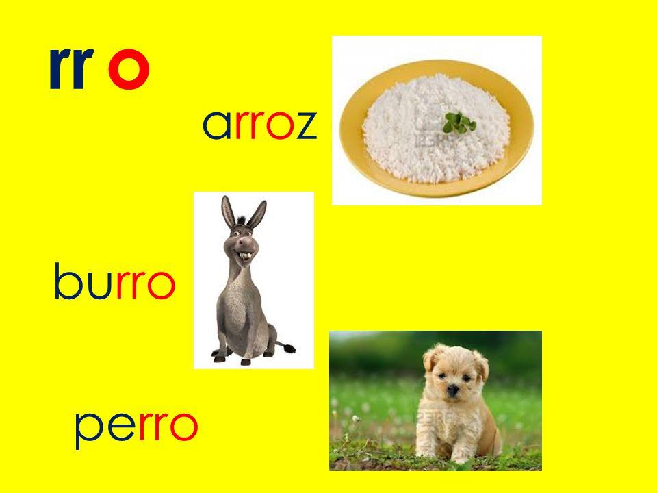 rr o arroz burro perro