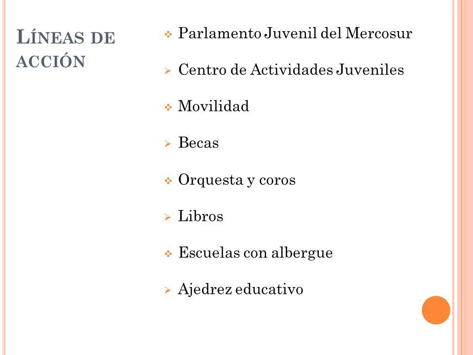 Líneas de acción Parlamento Juvenil del Mercosur