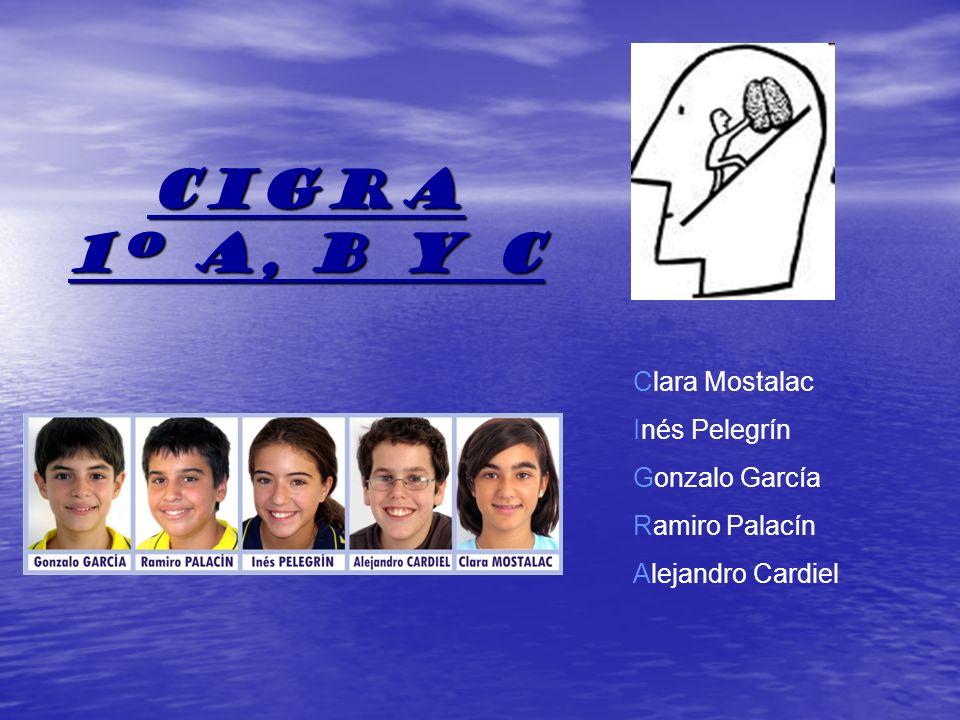 CIGRA 1º a, b y c Clara Mostalac Inés Pelegrín Gonzalo García