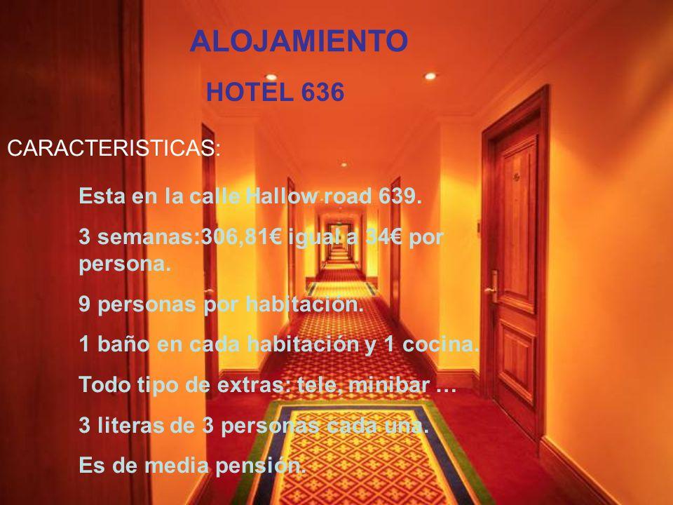ALOJAMIENTO HOTEL 636 CARACTERISTICAS: