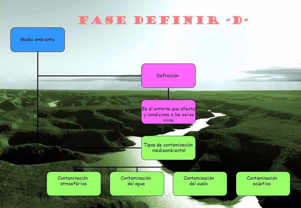 FASE DEFINIR -D- Medio ambiente Definición Es el entorno que afecta