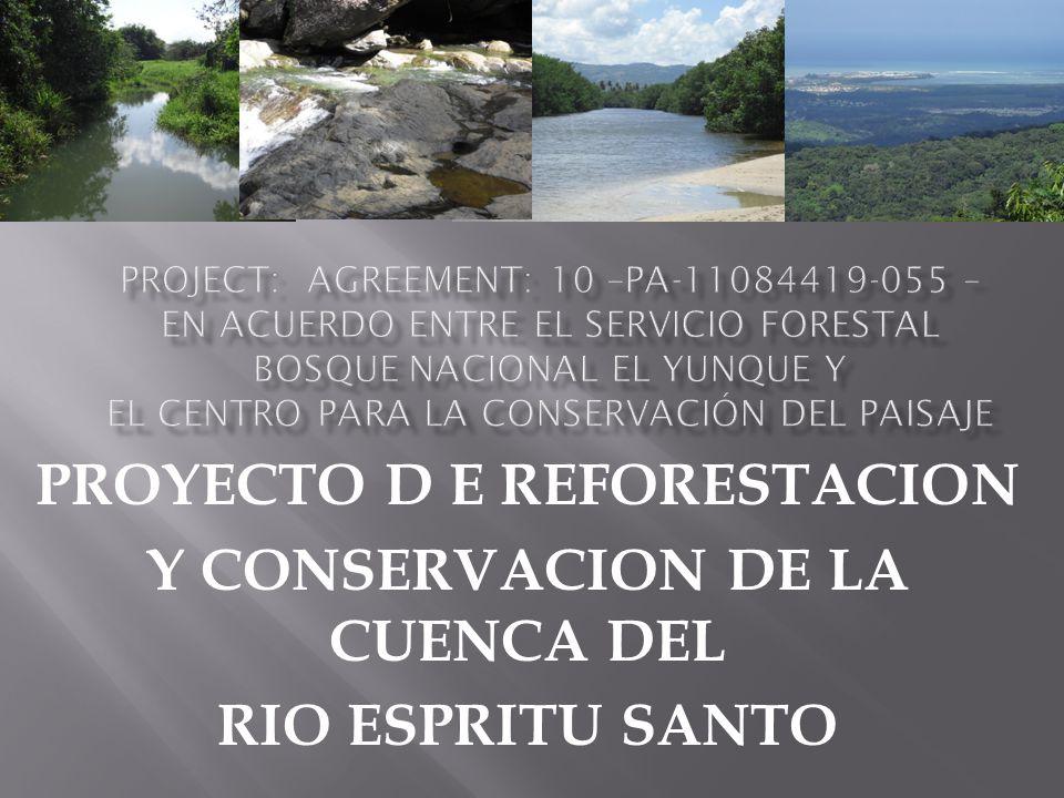 PROYECTO D E REFORESTACION Y CONSERVACION DE LA CUENCA DEL