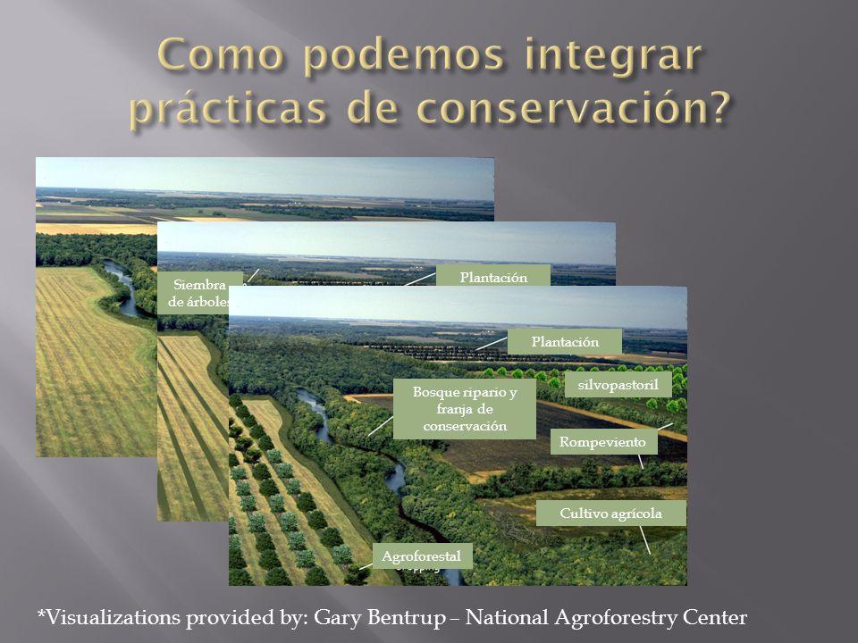 Como podemos integrar prácticas de conservación