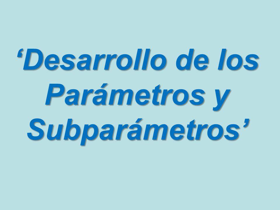 'Desarrollo de los Parámetros y Subparámetros'