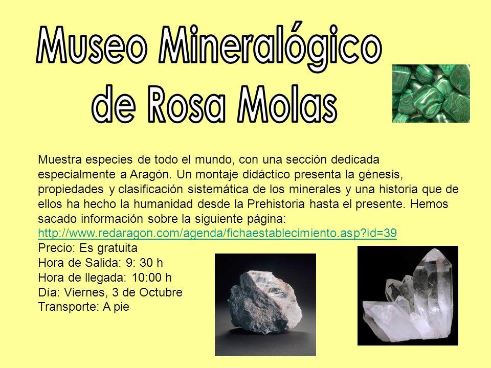 Museo Mineralógico de Rosa Molas