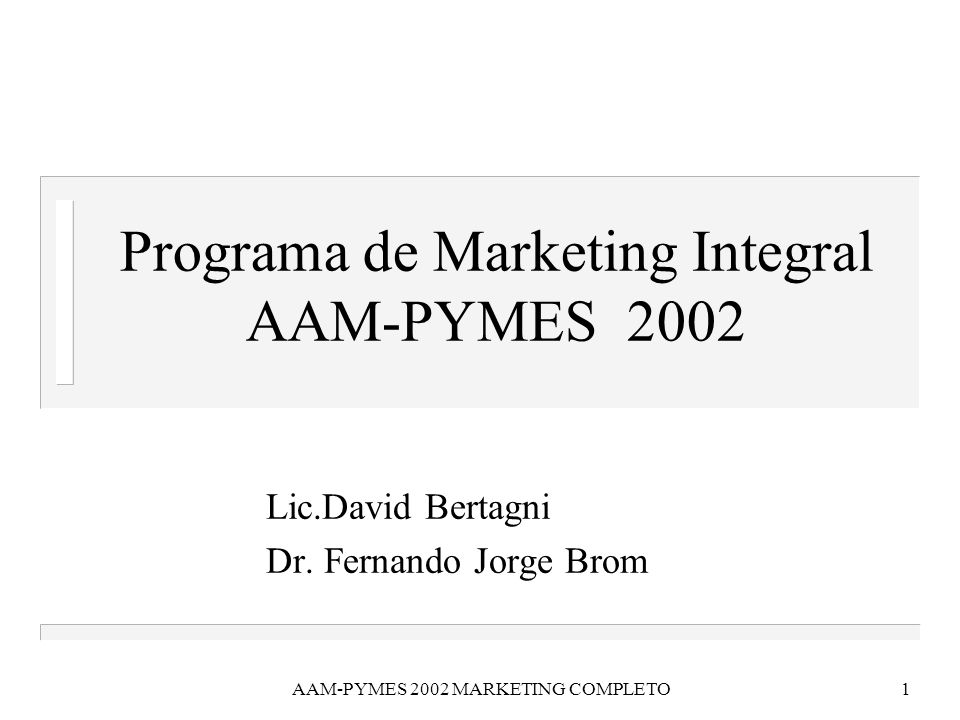 Programa de Marketing Integral AAM-PYMES 2002