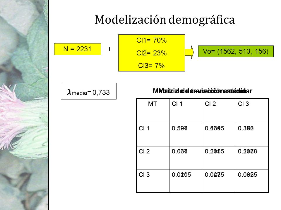 Matriz de desviación estándar Matriz de transición media