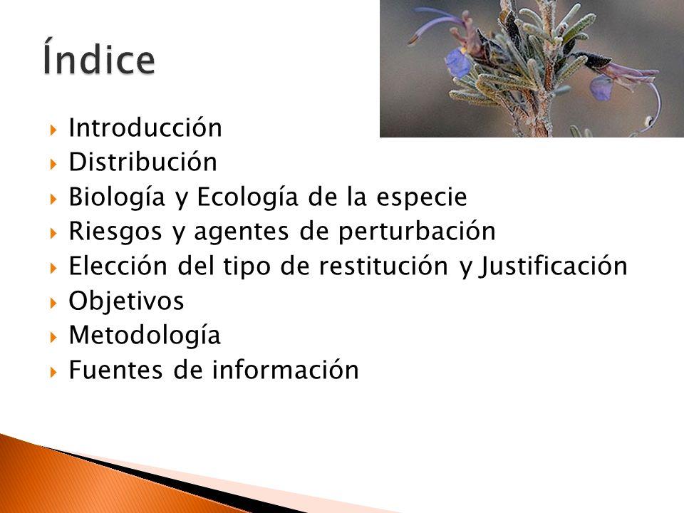 Índice Introducción Distribución Biología y Ecología de la especie