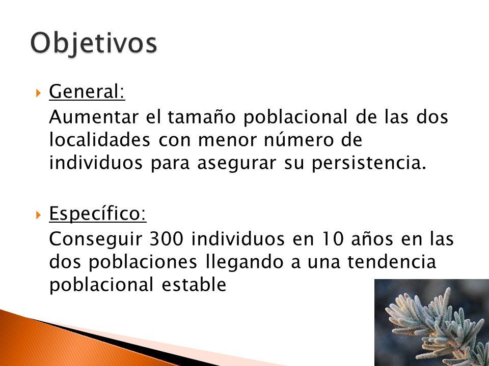 Objetivos General: Aumentar el tamaño poblacional de las dos localidades con menor número de individuos para asegurar su persistencia.