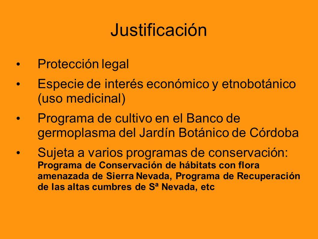 Justificación Protección legal