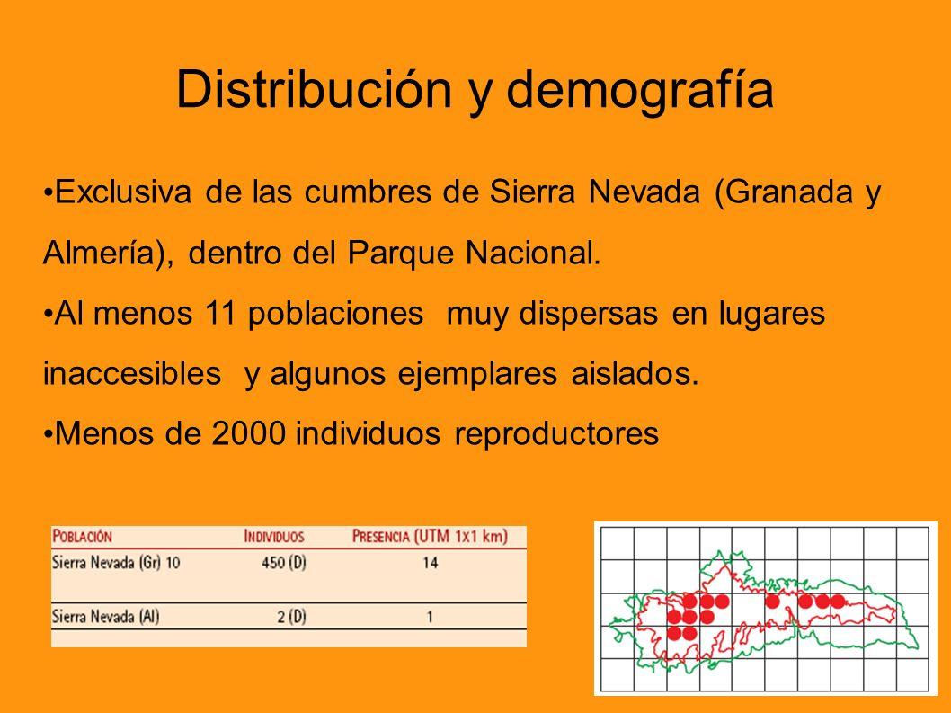 Distribución y demografía