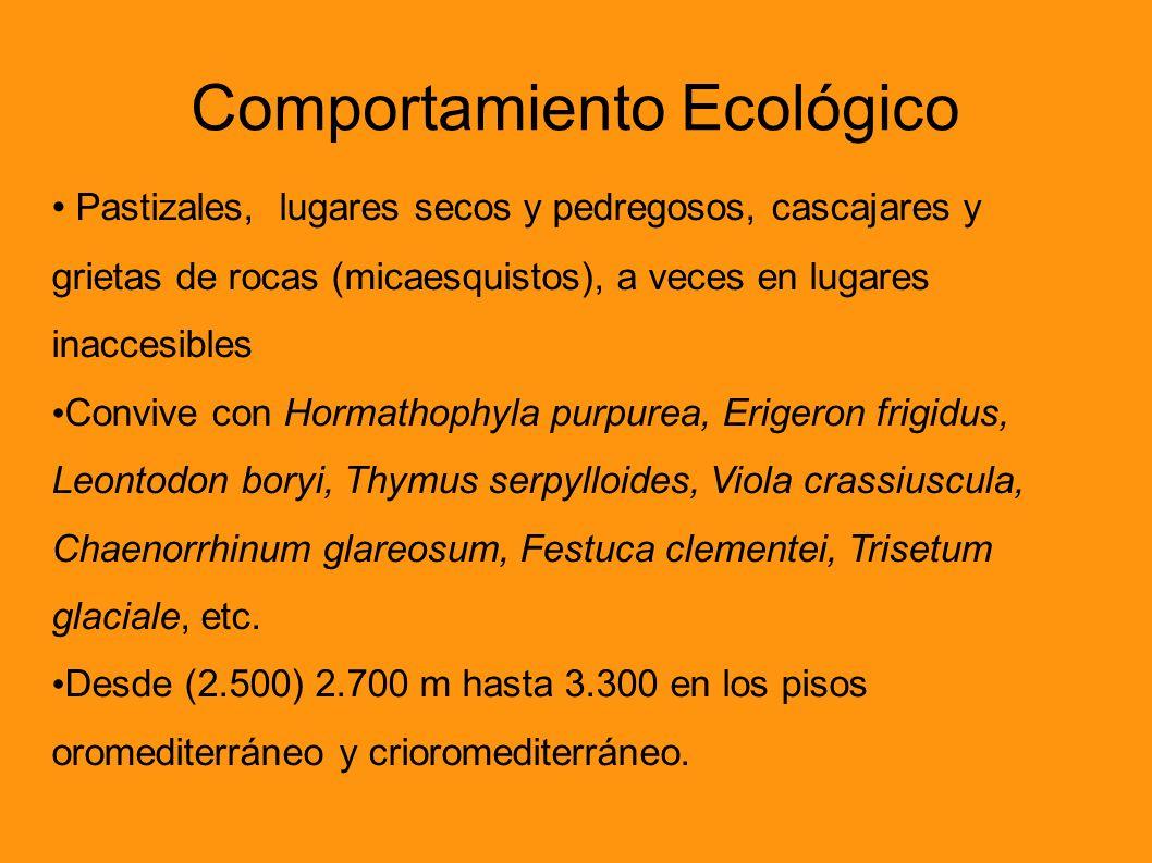 Comportamiento Ecológico