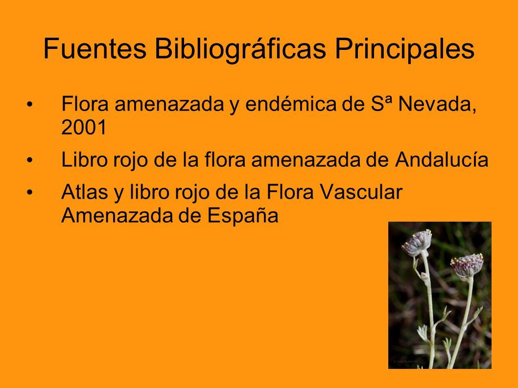 Fuentes Bibliográficas Principales
