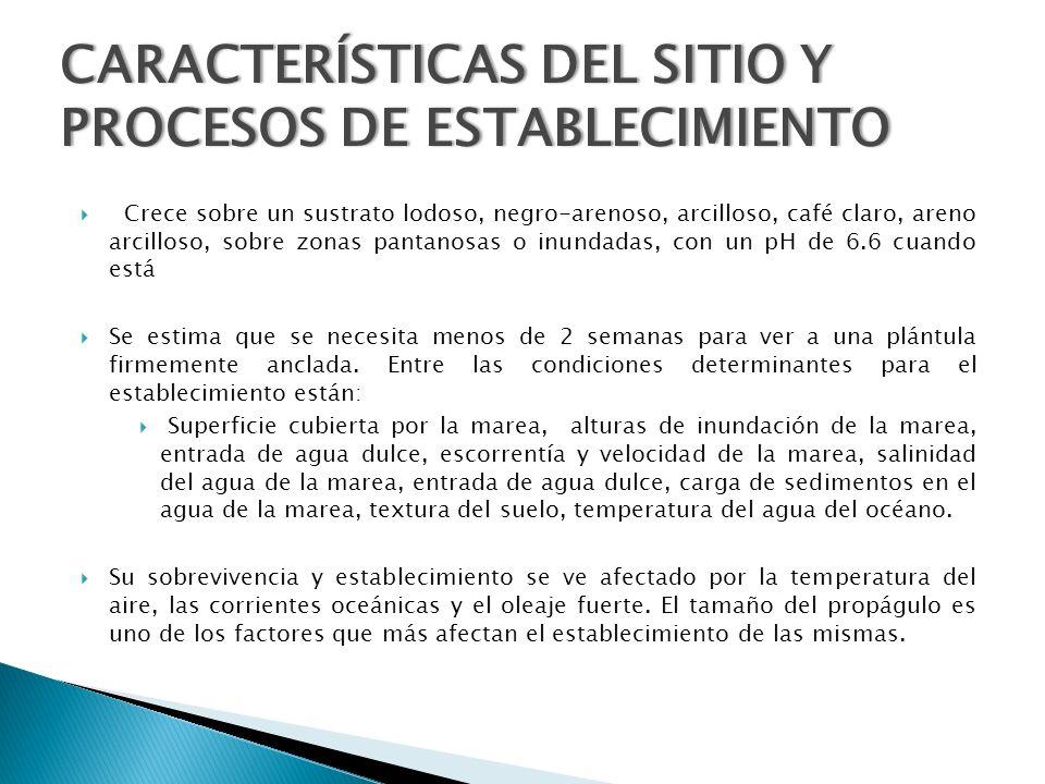 CARACTERÍSTICAS DEL SITIO Y PROCESOS DE ESTABLECIMIENTO