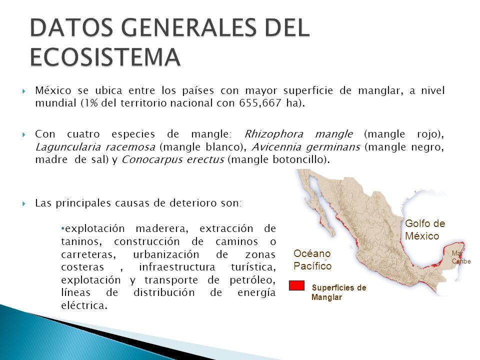 DATOS GENERALES DEL ECOSISTEMA