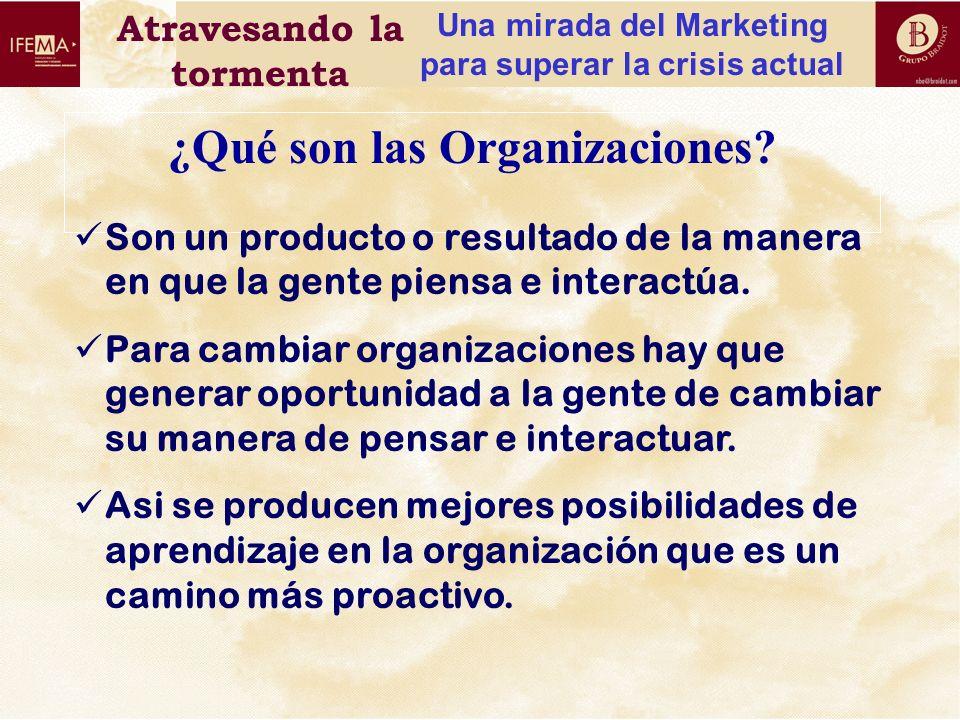¿Qué son las Organizaciones
