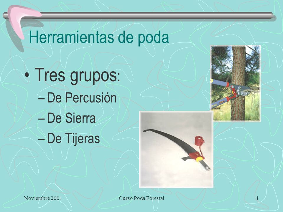 Tres grupos: Herramientas de poda De Percusión De Sierra De Tijeras