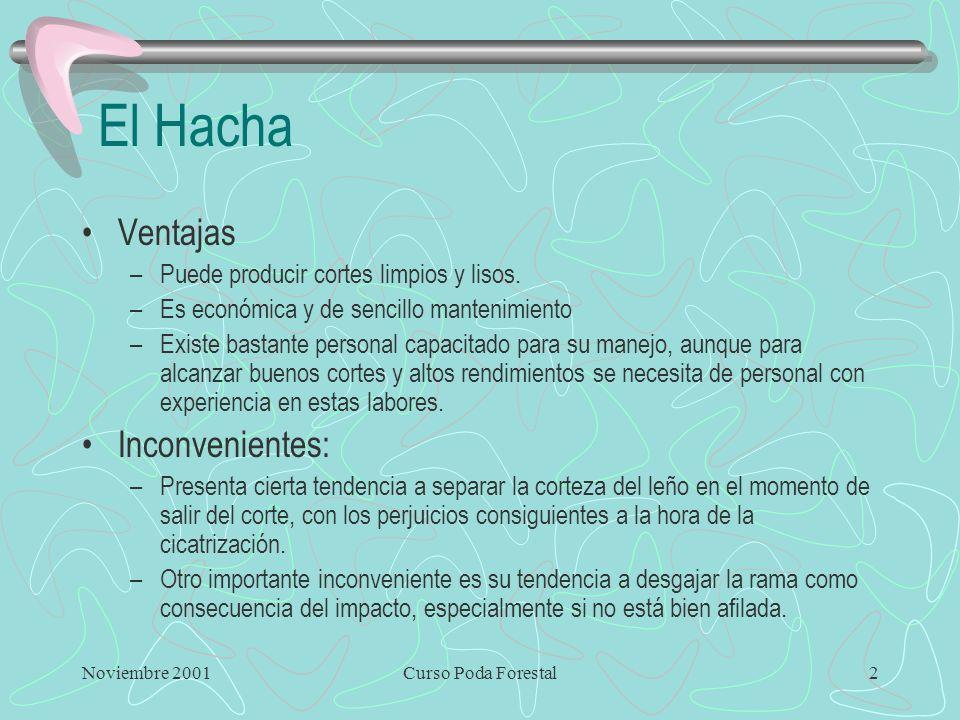 El Hacha Ventajas Inconvenientes:
