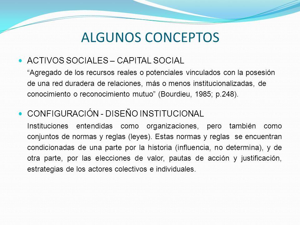 ALGUNOS CONCEPTOS ACTIVOS SOCIALES – CAPITAL SOCIAL