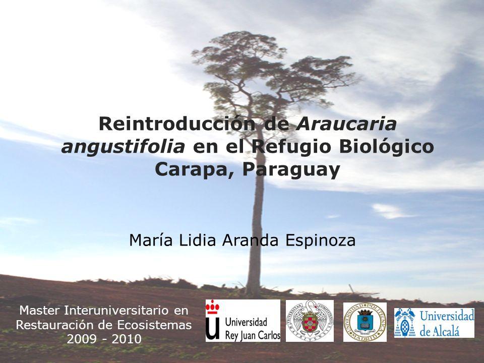 Master Interuniversitario en Restauración de Ecosistemas
