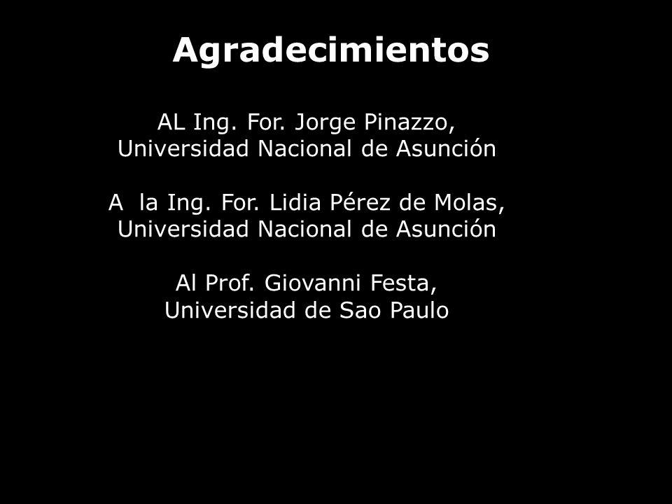 Agradecimientos AL Ing. For. Jorge Pinazzo,