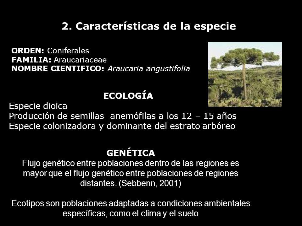 2. Características de la especie