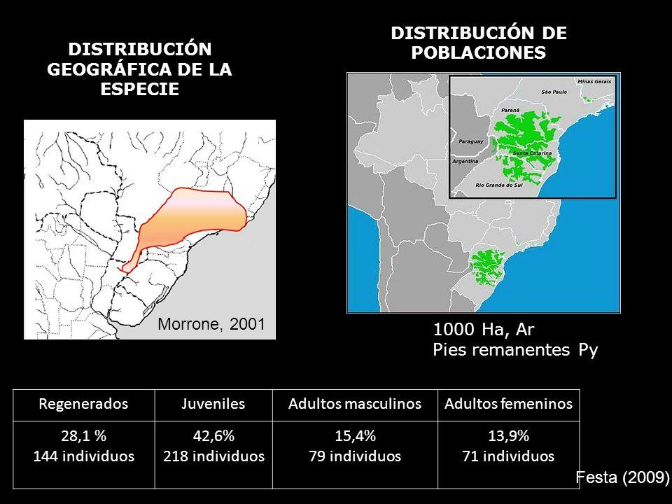 DISTRIBUCIÓN DE POBLACIONES DISTRIBUCIÓN GEOGRÁFICA DE LA ESPECIE