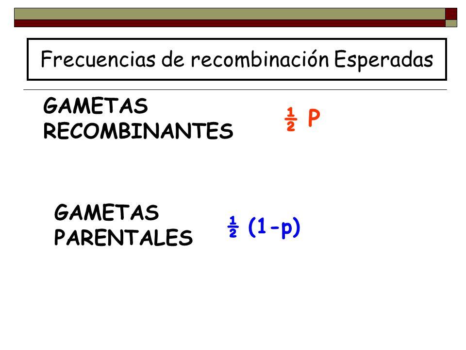 Frecuencias de recombinación Esperadas