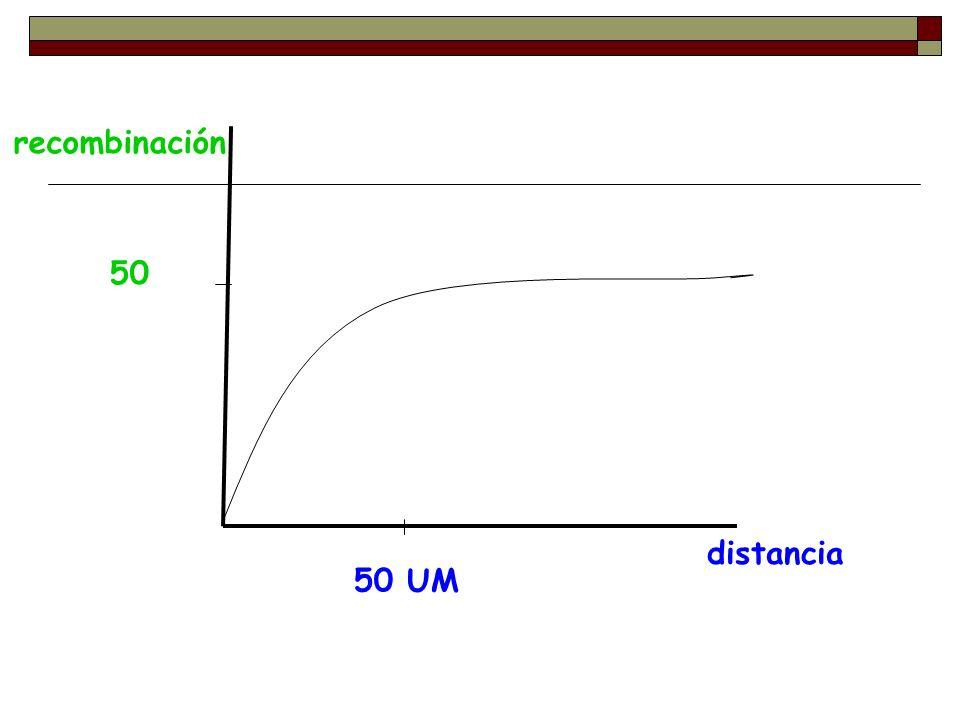recombinación 50 distancia 50 UM